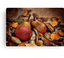 Pair of Pears Canvas Print
