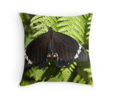 Waiting for his wings to dry Throw Pillow