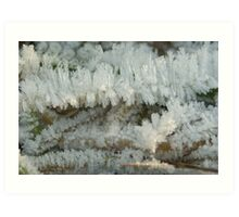 Fascinating Ice crystals 6 Art Print
