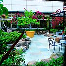 Zen Garden NYC by ShellyKay