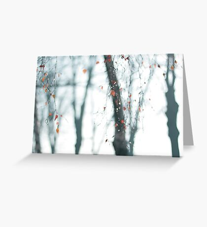 Crying Birch-trees Greeting Card
