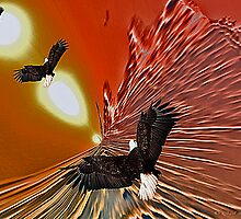 Fly Away From Here by Gail Bridger