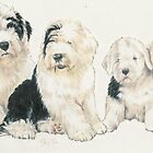 Old English Sheepdog Puppies by BarbBarcikKeith