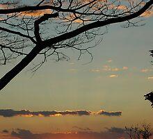 Sunset by DUNCAN DAVIE