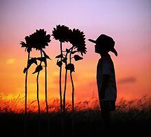 Sunflower Sunset by Annette Blattman