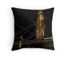 In the right light, at the right time, everything is extraordinary. Throw Pillow
