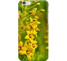 Swamp Candles iPhone Case/Skin