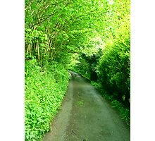 Country Lane 1 Photographic Print