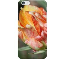 In Living Color iPhone Case/Skin