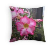 Dessert Rose Throw Pillow
