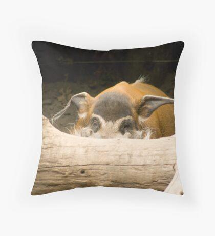 Swine Flu! Better hide. - Red River Hog Throw Pillow
