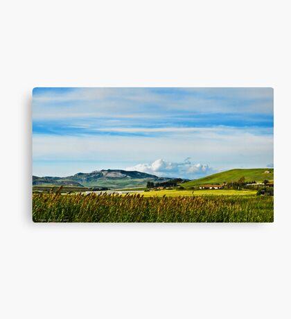 Green hills of Sicily Canvas Print