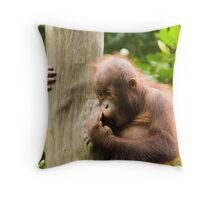 Baby Orangutan Throw Pillow