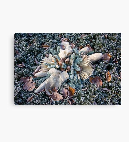 Arrangement Canvas Print