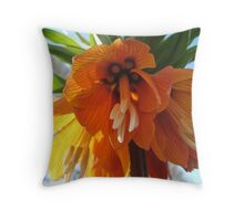 Name this Flower! - Crown Imperial (Thanks Gracey!) Throw Pillow