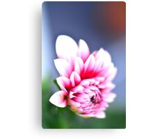 Pink Flower 2 Canvas Print