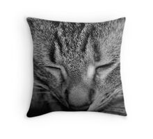 The Sleeping Prince Throw Pillow