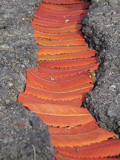 Quiet Piece 11 detail 2 by Susan Woolf