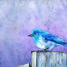Bluebird Bliss by Brazen Edwards