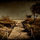 camino al mar by Luis Beltrán