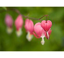 Fading hearts! Photographic Print