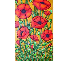 Poppies II Photographic Print