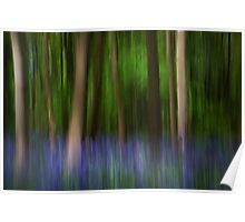 Bluebell impressionism! Poster