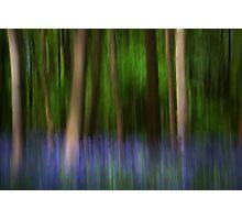 Bluebell impressionism! Photographic Print