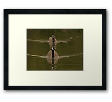 Ever Get The Feeling Your Being Followed! Framed Print