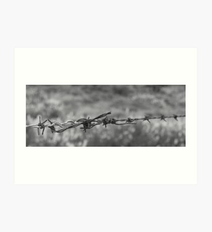Barbed wire, in B&W Art Print