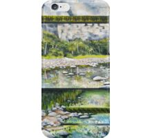 Aspects of Landscape 1 iPhone Case/Skin