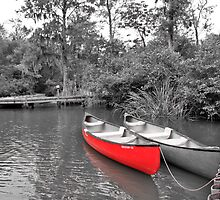 The LIttle Red Canoe by Wendy Mogul