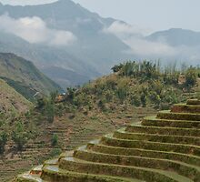 Beautiful view of Sapa by emmettm