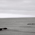 ripples and rocks by irisphotography