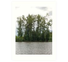 Wooded pond Art Print
