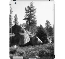 Black And White Landscape 14  iPad Case/Skin