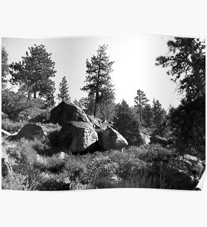 Black And White Landscape 14  Poster