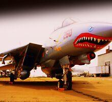 Jet Biter Plane by rtographsbyrolf