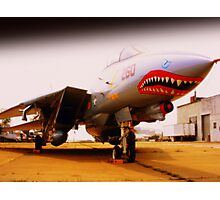 Jet Biter Plane Photographic Print