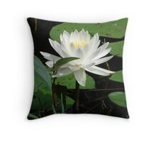 Nymphaea odorata Throw Pillow