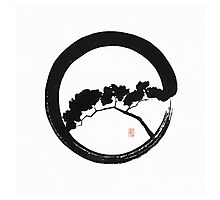 Tree Enso Photographic Print
