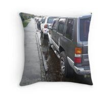 Driveway Lake Throw Pillow