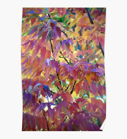 Autumn Ash Tree - Block Glass Poster