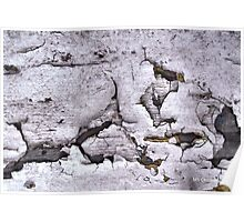 Paint Peeling, Old Urban Wall, Natural Patterns Poster