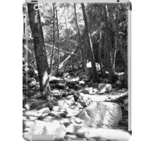 Black And White Landscape 23  iPad Case/Skin