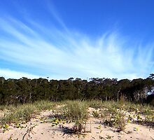 Willinga lake sand dune by melindaonleave