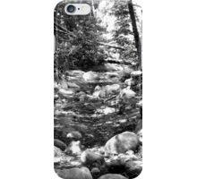 Black And White Landscape 24 iPhone Case/Skin