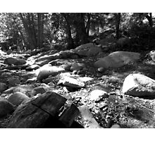 Black And White Landscape 25  Photographic Print