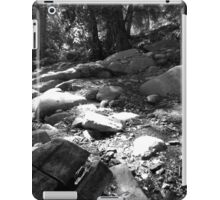 Black And White Landscape 25  iPad Case/Skin