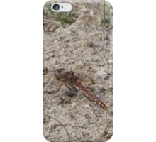 Dragonfly Variegated Meadowhawk Side iPhone Case/Skin